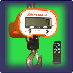 OCS(B) 6,000 lb (x 2) crane scale